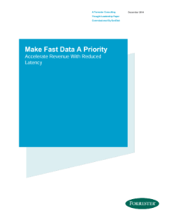 Forrester Fast Data – Analystenreport